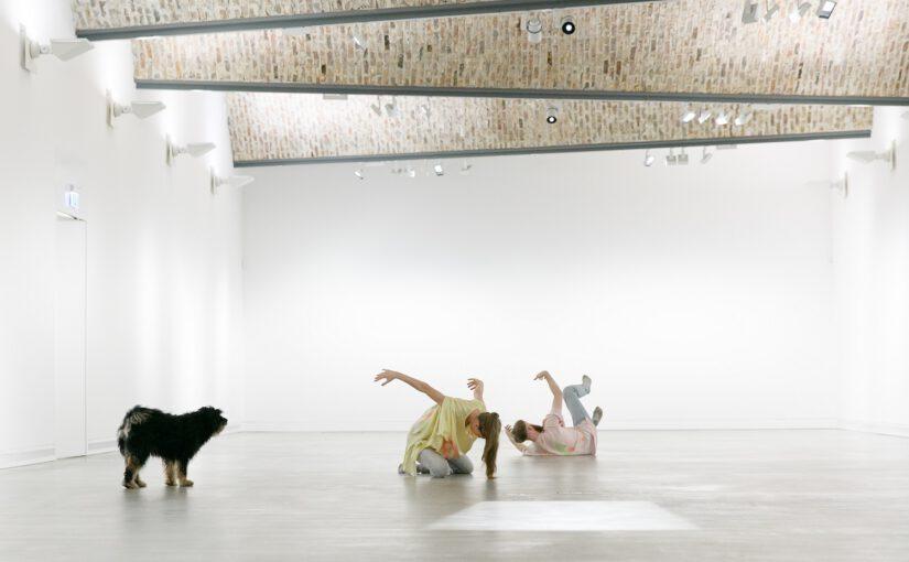 """Opelvillen 08.08.2020 ab 14 Uhr: """"Denken wie eine Katze"""" – Performance am Weltkatzentag"""